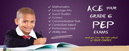 PEP for Grade 6 extra classes - Maths Unlimited SuperCourses